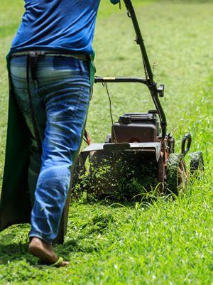 Maquinas de jardin